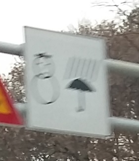 This picture isn't very good, but it's a sad commentary on melting snowmen becoming rain.